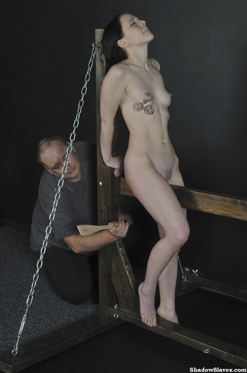 Bondage domination pony wooden